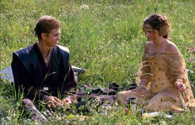 picnicscreen